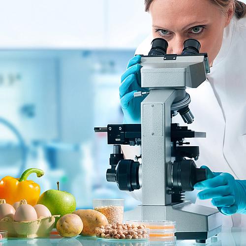 Norma ISO 22000 - bezpečnost potravím | Sigmapoint.sk